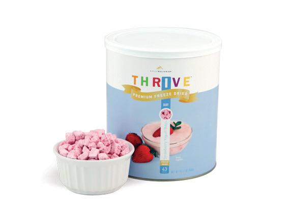 Strawberry Yogurt Bites - Freeze Dried